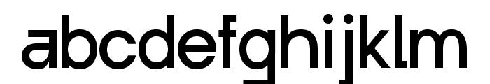Punta Regular Flat Font LOWERCASE