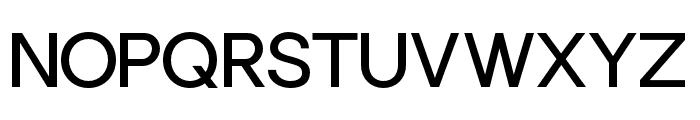 Punta-RegularFlat Font UPPERCASE