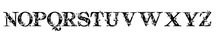 Quality Decor Regular Font UPPERCASE
