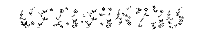 Quality Flower Regular Font OTHER CHARS