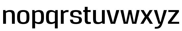 Reznik DemiBold Font LOWERCASE