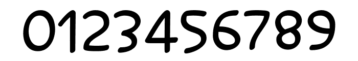 Salanino Mono Font OTHER CHARS