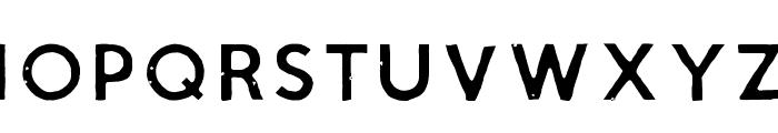 Script Calm Light Font LOWERCASE