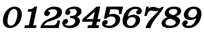 Shenandoah Clarendon Bold Italic Font OTHER CHARS