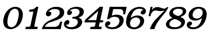 Shenandoah Clarendon Italic Font OTHER CHARS