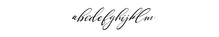 Single Signature Thin Tilted Font LOWERCASE