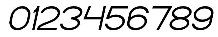 Standard International Italic Font OTHER CHARS