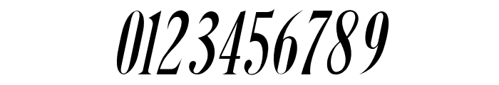 Steadfast-Italic Font OTHER CHARS