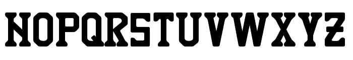 TIGRES UANL Font LOWERCASE