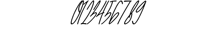 The Fallen Leaf Script Italic Italic Font OTHER CHARS