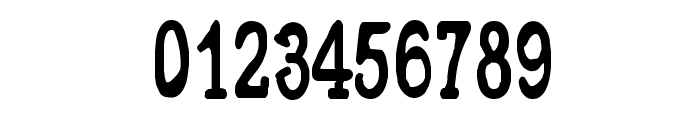 CF Metropolis Serif Regular Font OTHER CHARS