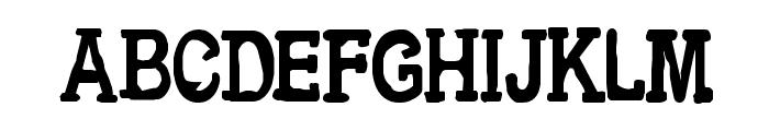 CF Metropolis Serif Regular Font LOWERCASE