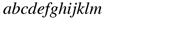 CG Times Italic Font LOWERCASE