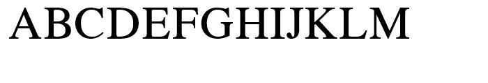 CG Times Regular Font UPPERCASE