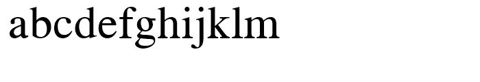 CG Times Regular Font LOWERCASE