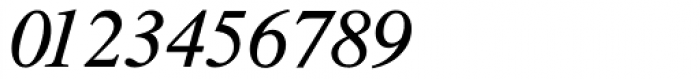 CG Times Italic Font OTHER CHARS