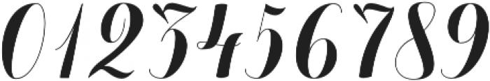 Chameleon Basic otf (400) Font OTHER CHARS