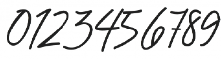 Chandelier Signature Regular otf (400) Font OTHER CHARS