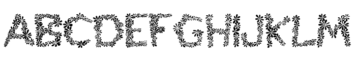 Chamylle Font UPPERCASE