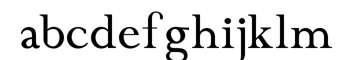 Chanticleer Roman NF Font LOWERCASE