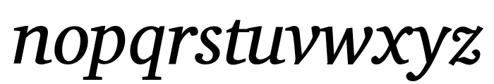 Charis SIL Italic Font LOWERCASE