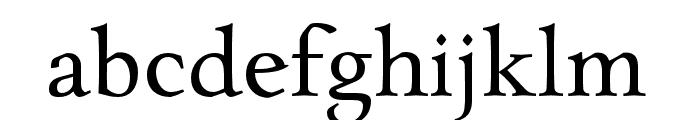 CharpentierRenaissanceReduced-N Font LOWERCASE