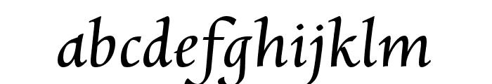 CharpentierRenaissanceReduced-O Font LOWERCASE