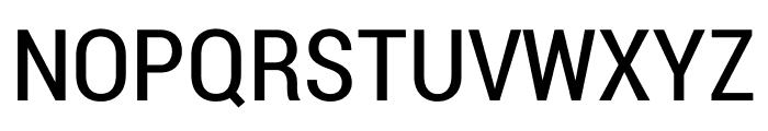 Charu Chandan Unicode Font UPPERCASE