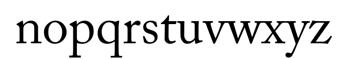 CheGuevara Golden Text Font LOWERCASE