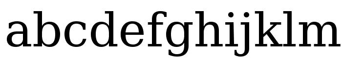 CheapProFonts Serif Pro Regular Font LOWERCASE