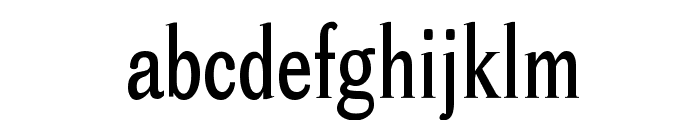 Cheetah Font LOWERCASE