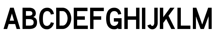 Chester Sans Bold Font UPPERCASE