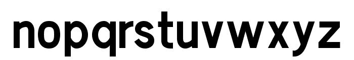 Chester Sans Bold Font LOWERCASE