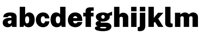 Cheyenne Sans Black Font LOWERCASE