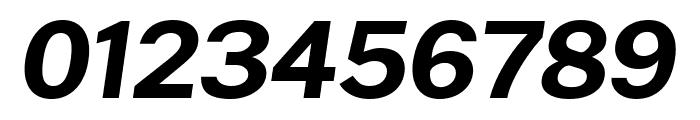 Cheyenne Sans Bold Italic Font OTHER CHARS