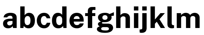 Cheyenne Sans Bold Font LOWERCASE