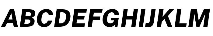 Cheyenne Sans ExtraBold Italic Font UPPERCASE