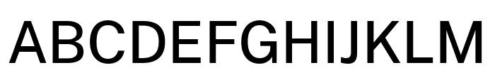 Cheyenne Sans Medium Font UPPERCASE