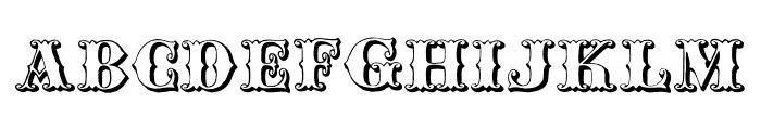 Chipperfield_and_Bailey Font LOWERCASE
