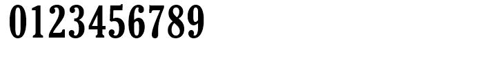 Cheltenham Bold Condensed Font OTHER CHARS