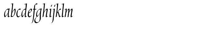 Chicory Regular Font LOWERCASE