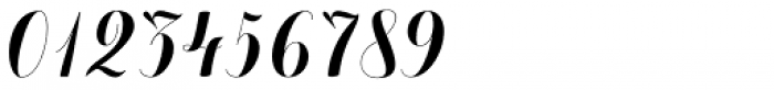Chameleon Basic Font OTHER CHARS