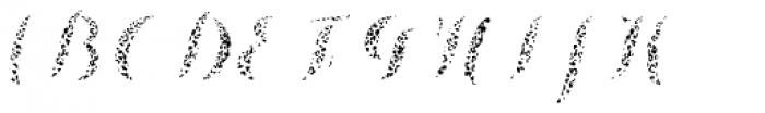 Chameleon Fill Skin 2 Font UPPERCASE