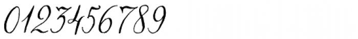 Chameleon Pen Italic Font OTHER CHARS