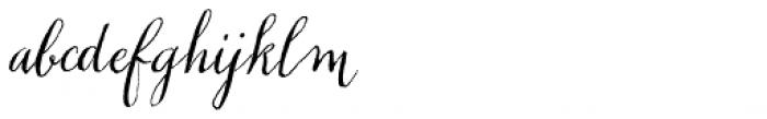Chameleon Pen Italic Font LOWERCASE