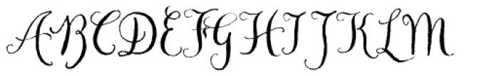 Chameleon Pen Font UPPERCASE