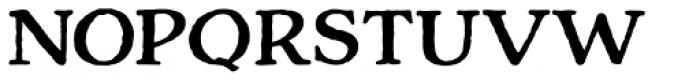 Charcuterie Serif Bold Font UPPERCASE