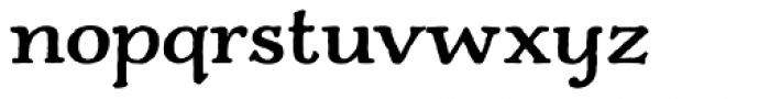 Charcuterie Serif Bold Font LOWERCASE
