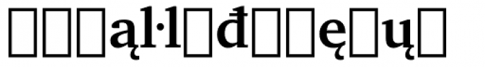 Charter Extension Bold Font LOWERCASE