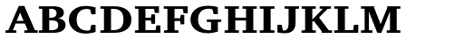 Charter Small Cap Bold Font LOWERCASE